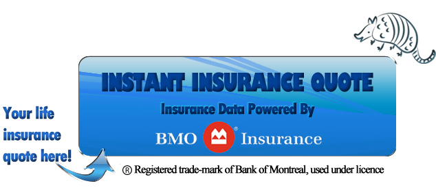 Bmo Term Life Insurance Quote Mesmerizing Life Insurance And Personal Risk Managementjoanne David Cfp